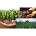 Fertilizer/Insect & Disease Control