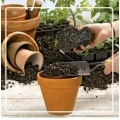Potting Soils and supplies